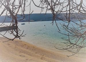 beach-in-front-of-house257c0fd27-70ac-1897-3a3d-0c1d62046baa