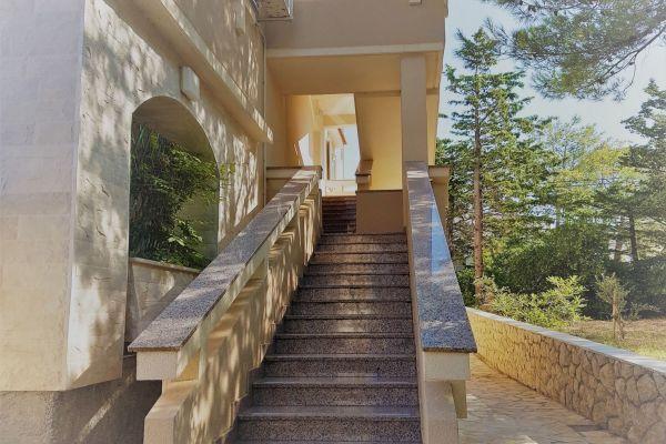 1-apartmentsvrtlici-a1-stairstoreachapartmenton1st-floorf0f19054-a012-1b43-4015-b200b686df20FC6897E4-362B-B449-895C-8F3ECB66B8EF.jpg